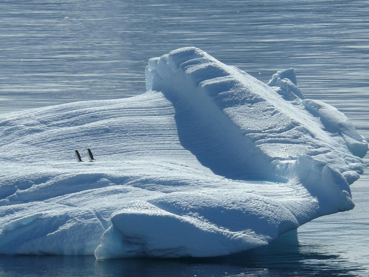 Inilah Perbedaan antara Kutub Utara dan Selatan